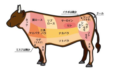 牛肉の希少部位